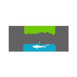 Outdoor Galaxy