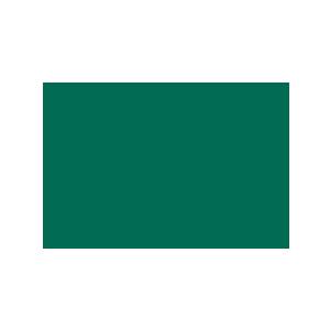 Medochemie Ltd.