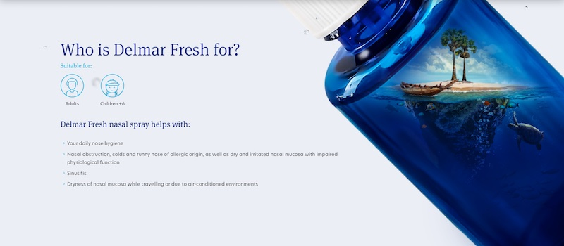 Delmar website design and development 1